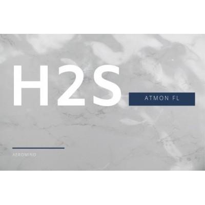 Atmon FL moduł pomiarowy siarkowodoru H2S