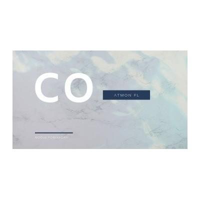 Atmon FL moduł pomiarowy tlenku węgla CO