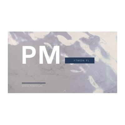 Atmon FL moduł pomiarowy pyłów PM10:/ PM2.5