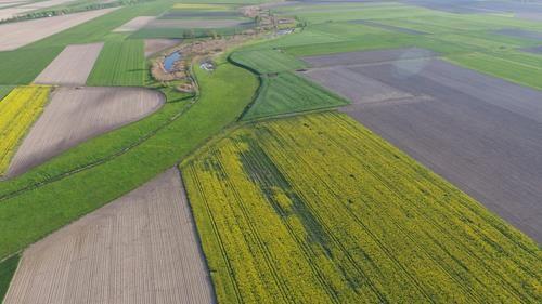 Drony dla rolnictwa